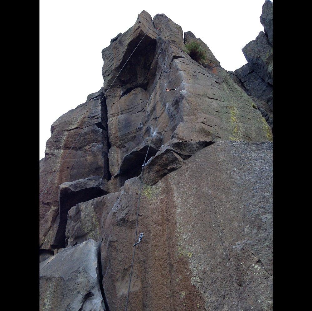 Llamas on the Lam - Smith Rock